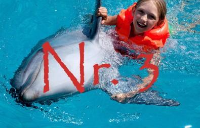 3.delfin-147755802
