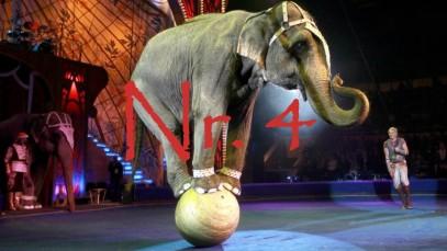 4.Zirkustiere-Elefant